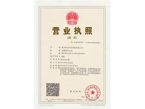 营业执照2016-副