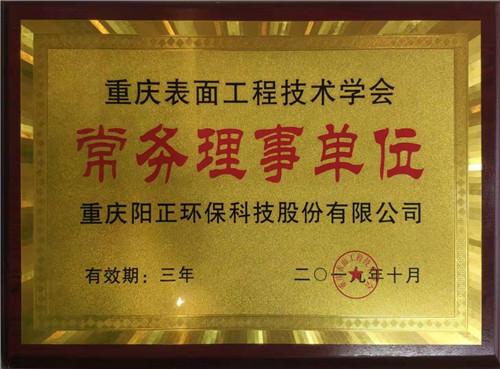 重庆 表面工程技术学会常务理事单位