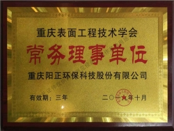 重庆表面工程技术学会常务理事单位